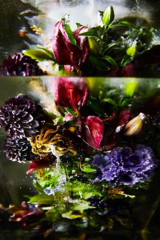 ICED-FLOWERS-6